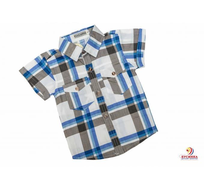 Рубашка №17/2 (белый, коричневый, голубой)