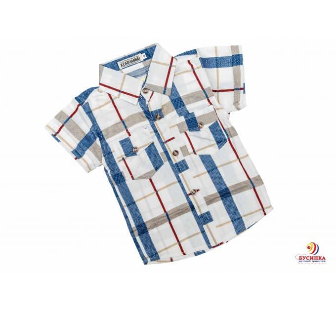 Рубашка №17/4 (белый-коричневый)